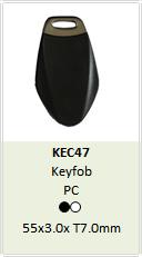 Hitag Key