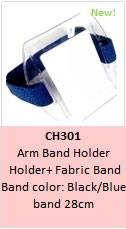 CH301